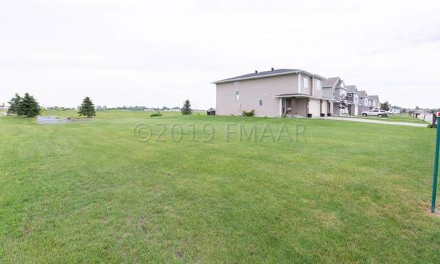 1315 Southwood Drive, Dilworth, MN 56529 (MLS #19-5990) :: FM Team