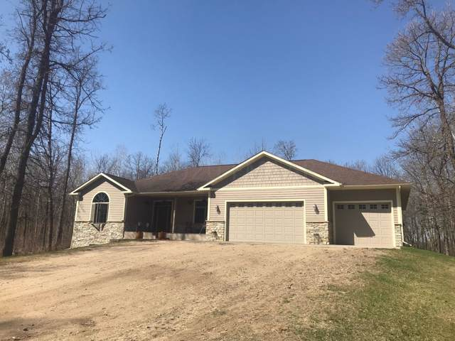 24960 Country Acres Road, Detroit Lakes, MN 56501 (MLS #20-223) :: FM Team