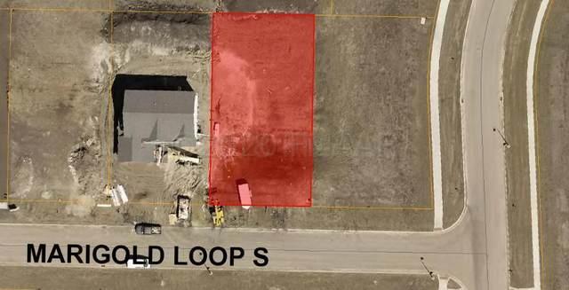 6188 Marigold Loop S, Fargo, ND 58104 (MLS #20-4957) :: FM Team