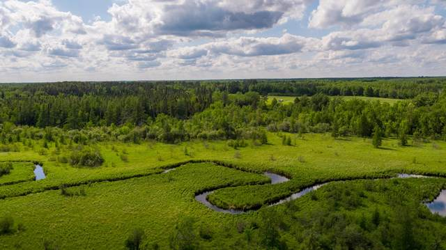 TWP 149 R 34 Sec 1 Nw1/4 Of The Se 1/4, Puposky, MN 56601 (MLS #20-5587) :: FM Team