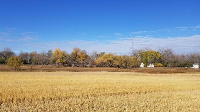 TBD 21ST Avenue NE, Mekinock, ND 58258 (MLS #20-6090) :: FM Team