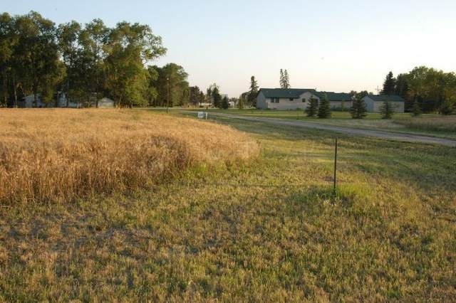 LOT 13 Sheyenne Drive, Abercrombie, ND 58001 (MLS #21-1793) :: RE/MAX Signature Properties
