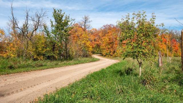 LOT 4-6 W Lake Olaf Road, Pelican Rapids, MN 56572 (MLS #21-5023) :: RE/MAX Signature Properties