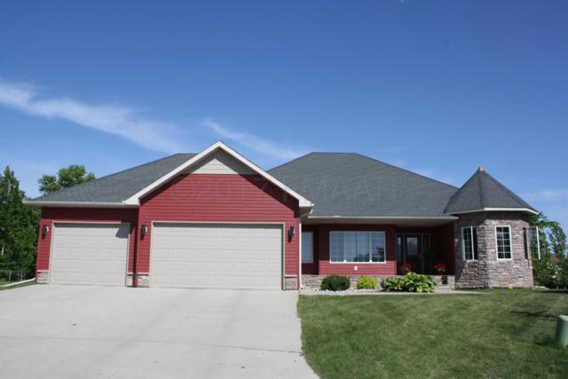 229 36 1/2 AVE Place E, West Fargo, ND 58078 (MLS #17-2336) :: FM Team