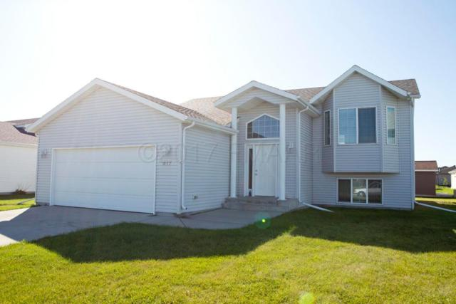 1017 Westport Parkway, West Fargo, ND 58078 (MLS #17-5472) :: FM Team