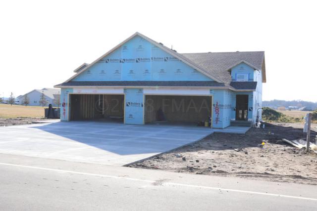 1871 Longview Drive, Detroit Lakes, MN 56501 (MLS #18-3811) :: FM Team