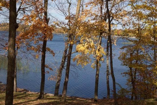 50943 Fish Lake Road, Detroit Lakes, MN 56501 (MLS #21-1372) :: FM Team