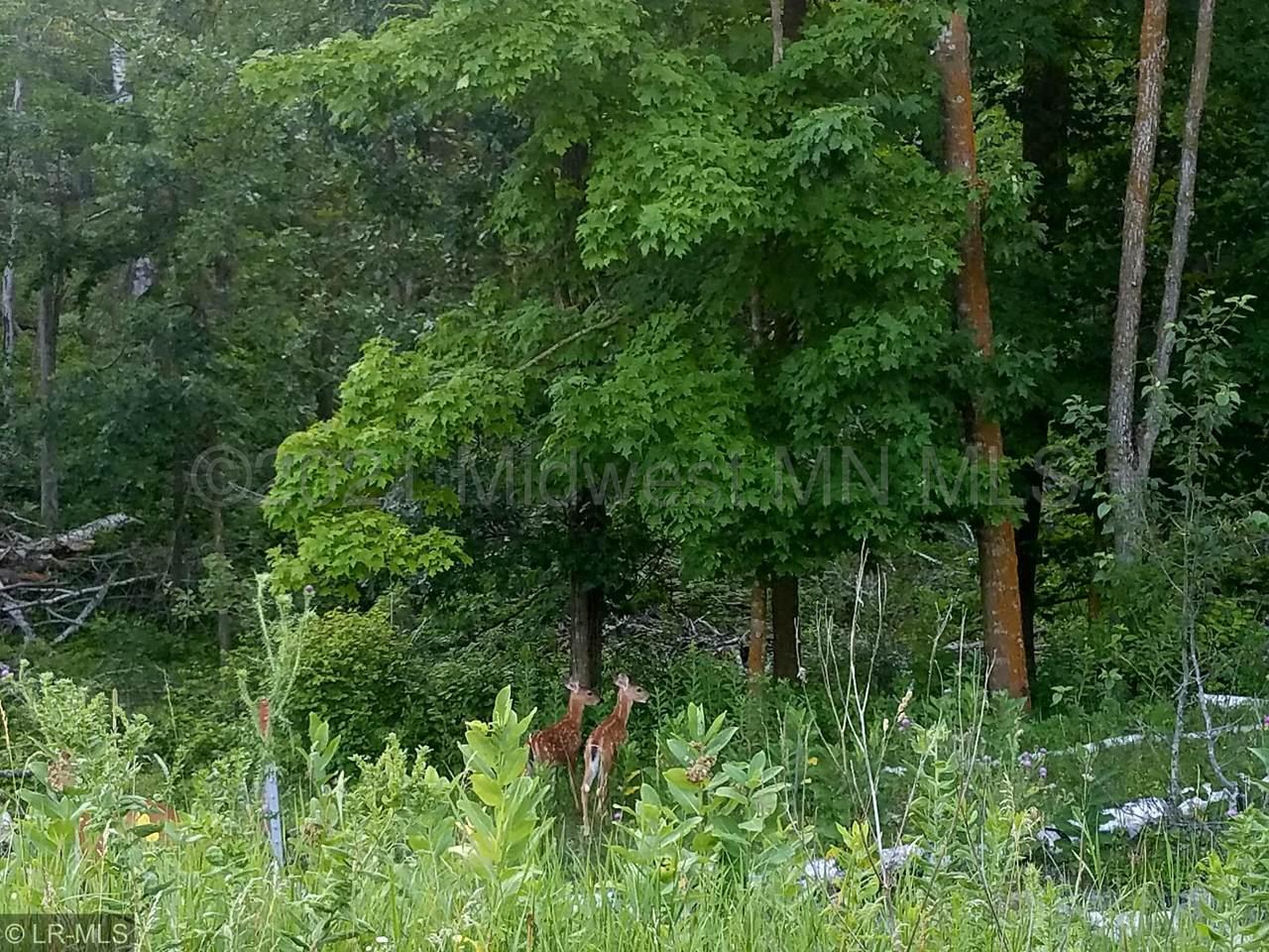 Xxxxx Eaglewood Drive - Photo 1