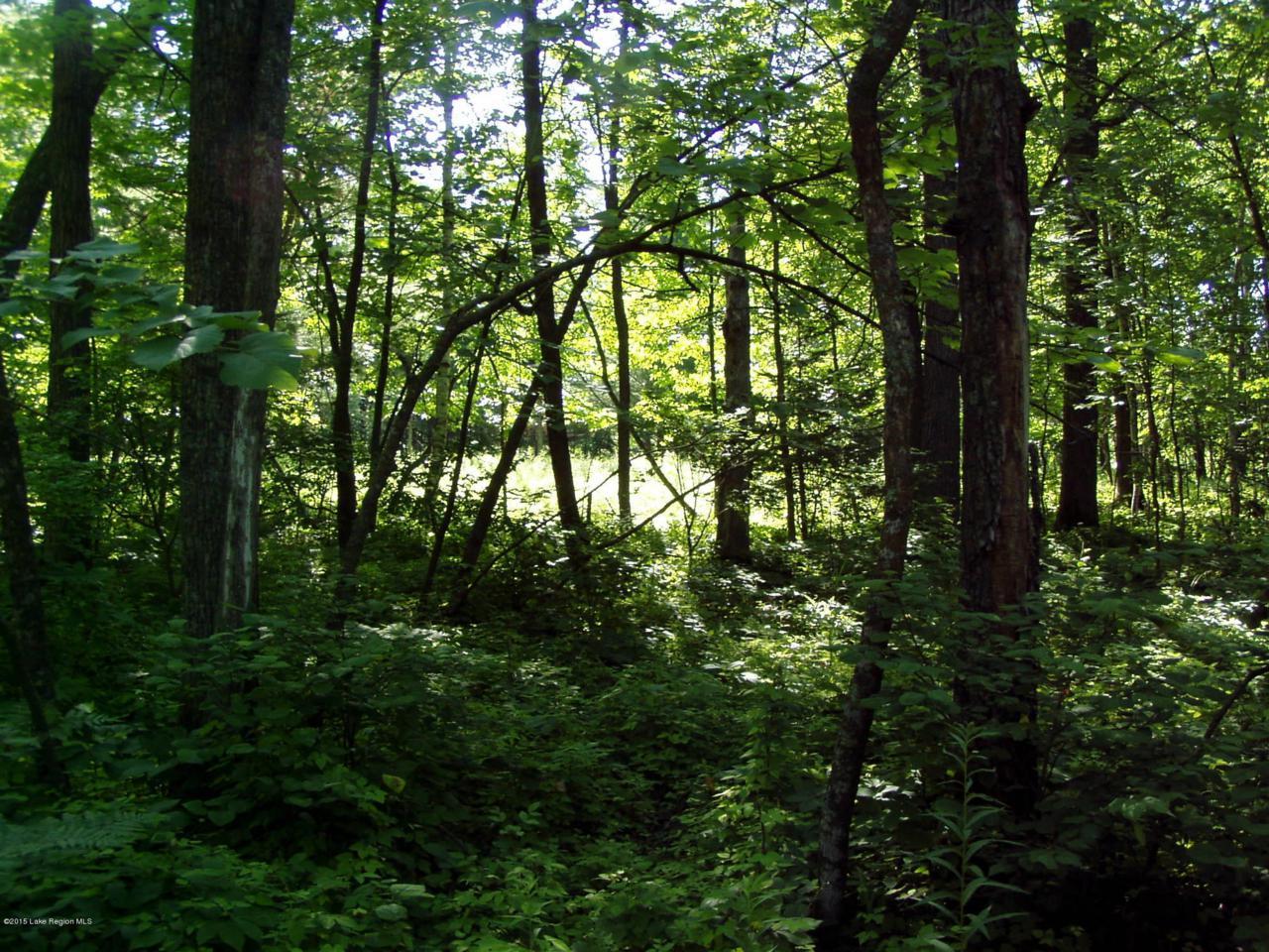 Lot 8 B-1 Falling Leaf Trail - Photo 1