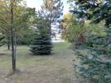 45xxx Red Pine Loop - Photo 3