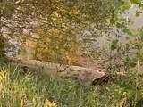45xxx Red Pine Loop - Photo 6