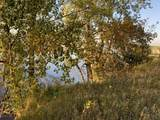 45xxx Red Pine Loop - Photo 8