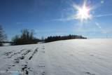 36 Acres County Rd 7 - Photo 9