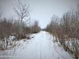 11441 Leaf River Road - Photo 15