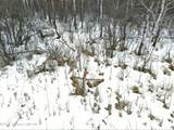 21482 Co Rd 26 - Photo 32