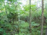 Lot 3 B-1 Falling Leaf Trail - Photo 1