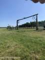 Tbd Huntersville Road - Photo 1