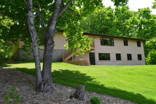 32899 Sybil Lake Road, Vergas, MN 56587 (MLS #20-19572) :: Ryan Hanson Homes Team- Keller Williams Realty Professionals