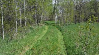 80 Acre Co Rd 4, Mahnomen, MN 56557 (MLS #20-19632) :: Ryan Hanson Homes Team- Keller Williams Realty Professionals
