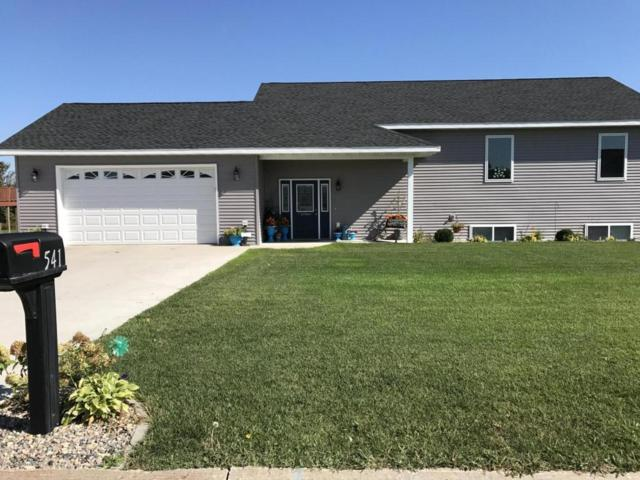 541 Pelican River Road, Detroit Lakes, MN 56501 (MLS #20-20837) :: Ryan Hanson Homes Team- Keller Williams Realty Professionals