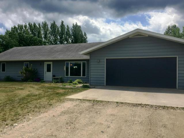 28169 Meadow Drive, Detroit Lakes, MN 56501 (MLS #20-20848) :: Ryan Hanson Homes Team- Keller Williams Realty Professionals