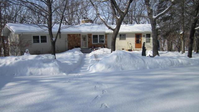 22671 Asthre Drive, Battle Lake, MN 56515 (MLS #20-22103) :: Ryan Hanson Homes Team- Keller Williams Realty Professionals