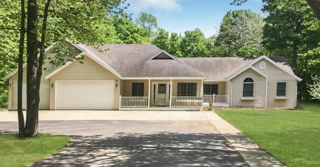 14203 E Fox Lake Road, Detroit Lakes, MN 56501 (MLS #20-22282) :: Ryan Hanson Homes Team- Keller Williams Realty Professionals
