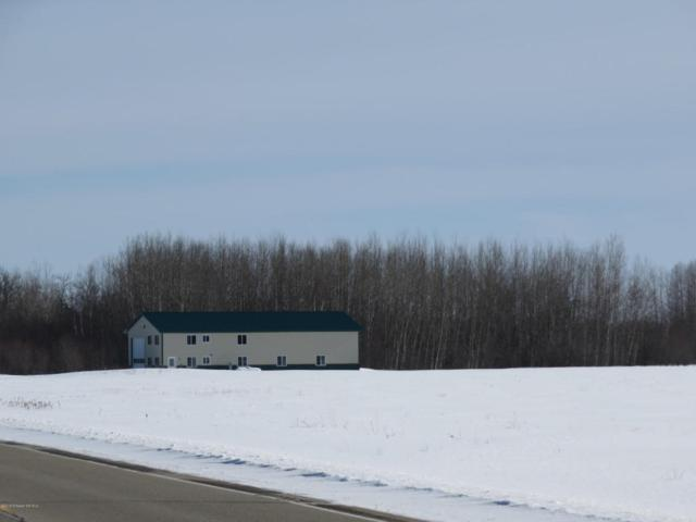 4305 State Highway 11, Williams, MN 56686 (MLS #20-22326) :: FM Team