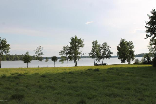 Xxxxx Long Lake Road, Ottertail, MN 56571 (MLS #20-22388) :: Ryan Hanson Homes Team- Keller Williams Realty Professionals