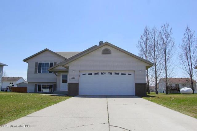 1001 9th Avenue SE, Barnesville, MN 56514 (MLS #20-22937) :: Ryan Hanson Homes Team- Keller Williams Realty Professionals