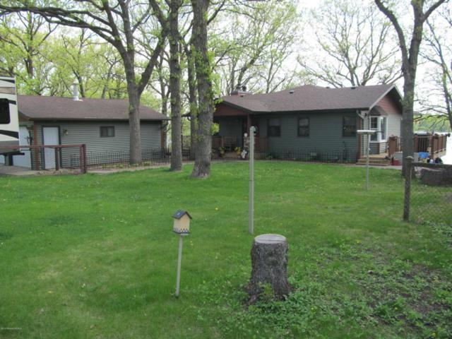 14259 W Lake Sallie Drive, Detroit Lakes, MN 56501 (MLS #20-23151) :: Ryan Hanson Homes Team- Keller Williams Realty Professionals