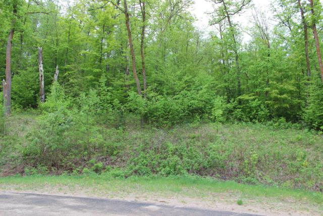 Tbd Big Pine Bk Lot, Perham, MN 56573 (MLS #20-23298) :: Ryan Hanson Homes Team- Keller Williams Realty Professionals