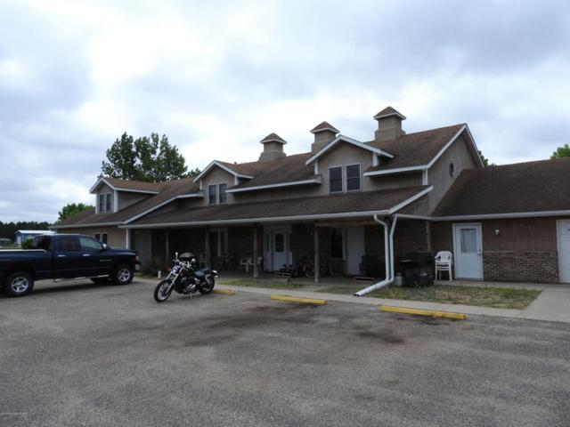 134 River View Road, Ottertail, MN 56571 (MLS #20-23400) :: FM Team