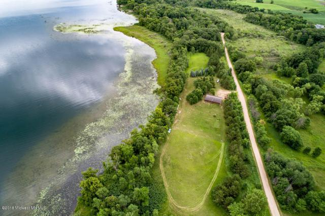 35355 Rose Lake Drive, Frazee, MN 56544 (MLS #20-23887) :: Ryan Hanson Homes Team- Keller Williams Realty Professionals