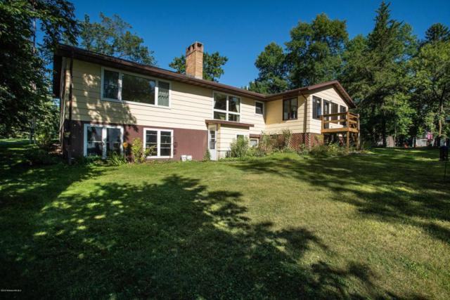 44535 Castle Drive, Henning, MN 56551 (MLS #20-24206) :: Ryan Hanson Homes Team- Keller Williams Realty Professionals