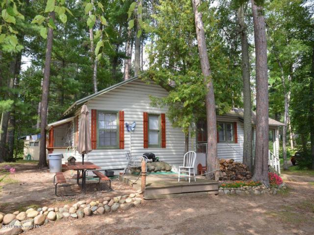 17718 Daffodil Trail, Park Rapids, MN 56470 (MLS #20-24597) :: Ryan Hanson Homes Team- Keller Williams Realty Professionals