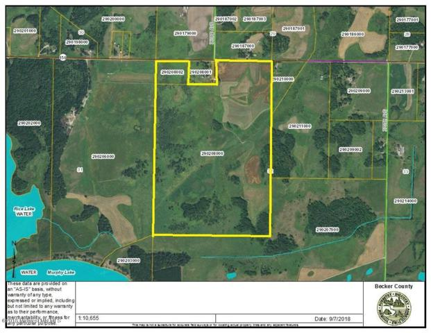 Tbd County Rd 150, Frazee, MN 56544 (MLS #20-24614) :: Ryan Hanson Homes Team- Keller Williams Realty Professionals