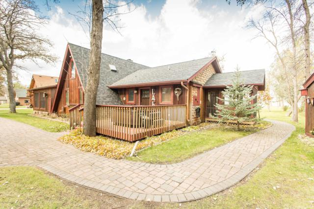 37011 Blarney Beach Road, Battle Lake, MN 56515 (MLS #20-24961) :: Ryan Hanson Homes Team- Keller Williams Realty Professionals
