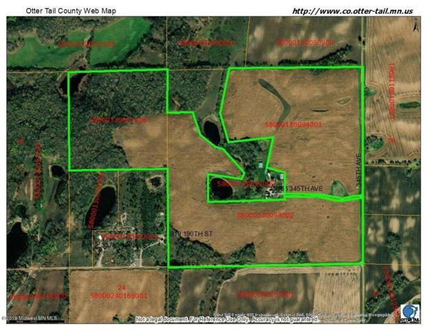 00000 345th Avenue, Battle Lake, MN 56515 (MLS #20-27352) :: Ryan Hanson Homes- Keller Williams Realty Professionals