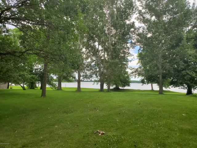 13999 Ness Estate Lane, Lake Park, MN 56554 (MLS #20-27580) :: FM Team