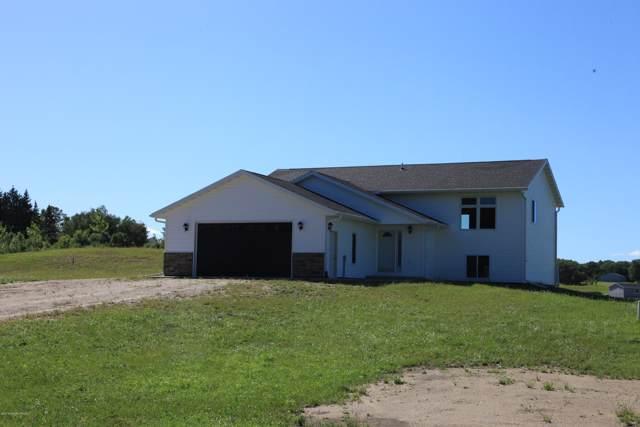 14824 310th Avenue, Frazee, MN 56544 (MLS #20-28099) :: Ryan Hanson Homes- Keller Williams Realty Professionals