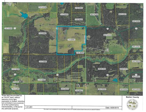 Tbd 530th Ave, Frazee, MN 56544 (MLS #20-28290) :: Ryan Hanson Homes- Keller Williams Realty Professionals
