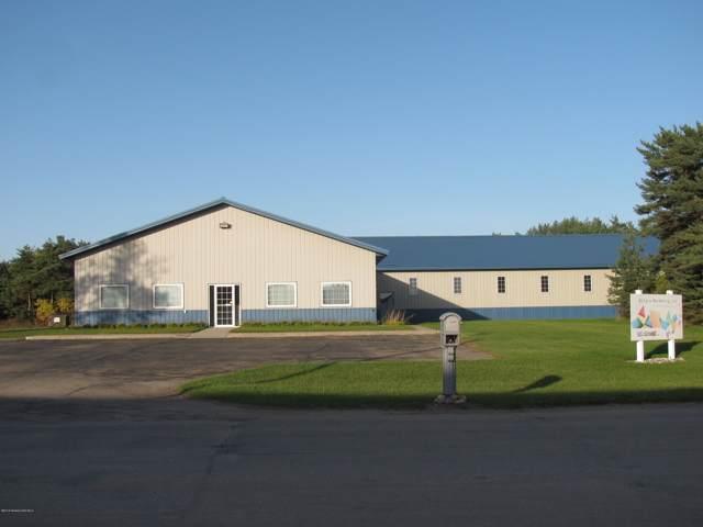 610 Pinewood Lane, Perham, MN 56573 (MLS #20-28659) :: Ryan Hanson Homes- Keller Williams Realty Professionals