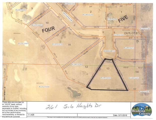 216 Silo Heights Dr Drive, Wadena, MN 56482 (MLS #20-28719) :: Ryan Hanson Homes- Keller Williams Realty Professionals