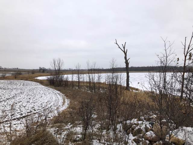 Tbd Halstad Lake Road, Detroit Lakes, MN 56501 (MLS #20-28757) :: FM Team