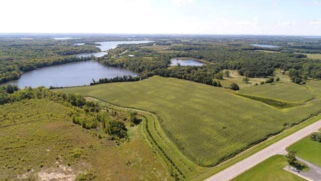 339 Acres Co Road 6, Detroit Lakes, MN 56501 (MLS #20-28877) :: FM Team