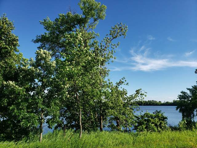Lot 3 E Big Mcdonald Drive, Dent, MN 56528 (MLS #20-29708) :: Ryan Hanson Homes- Keller Williams Realty Professionals