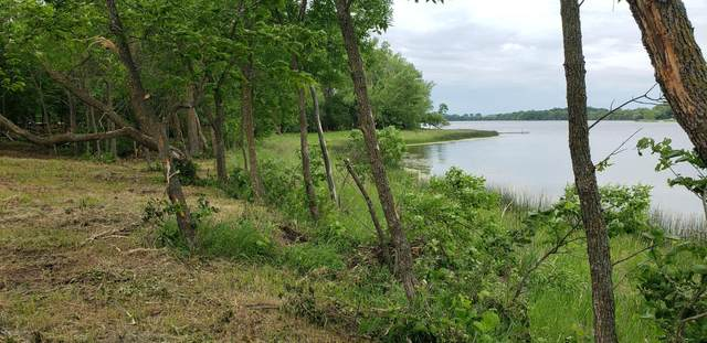 Lot 3 Bluegill Bay Estates, Ashby, MN 56309 (MLS #20-29877) :: FM Team
