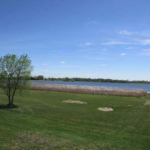 15.69 Acre Hummingbird Way SW, Alexandria, MN 56308 (MLS #20-30282) :: Ryan Hanson Homes- Keller Williams Realty Professionals