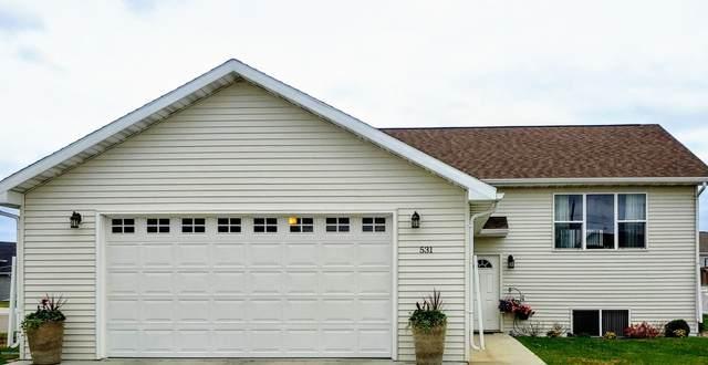 531 Riverwood Drive, Detroit Lakes, MN 56501 (MLS #20-30326) :: Ryan Hanson Homes- Keller Williams Realty Professionals